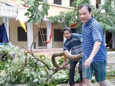 Nha Trang khắc phục hậu quả bão số 12