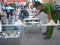 Hơn 735 kg ngà voi và sừng tê giác 'sa lưới' ở cảng miền Trung