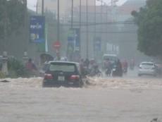 Quảng Bình: Lượng mưa ở Đồng Hới lên đến 770 mm