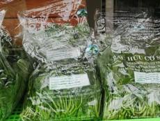 Vì sao thực phẩm hữu cơ được ưa chuộng?