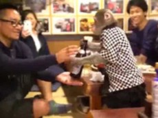 Khỉ làm phục vụ ở nhà hàng Nhật Bản
