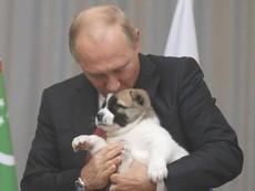 Ông Putin được tặng chó cưng nhân dịp sinh nhật