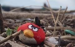 100 tấn rác 'đổ bộ' bờ biển Đà Nẵng