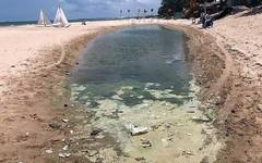 Cào cát dọn sạch bãi biển bị xử phạt!