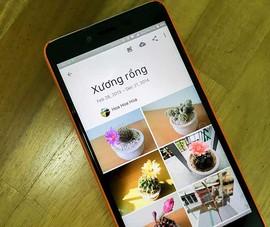 Google Photos sử dụng trí thông minh nhân tạo