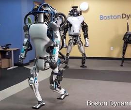 Các mẫu robot giúp việc nhà sắp có trên thị trường