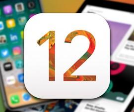 Cách tải và cài đặt iOS 12 Developer Beta