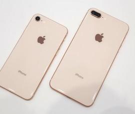 iPhone 8 giảm giá dưới mức 18 triệu đồng