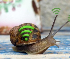 Những lý do khiến tốc độ WiFi bị chậm