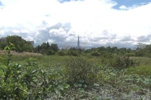 Dân muốn sớm thực hiện khu đô thị mới ở Thanh Đa