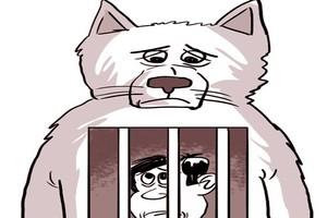 Chó rượt, người đi tù