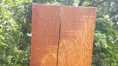 Đường đi bộ gỗ lim tiền tỉ ở Huế xuất hiện nhiều vết nứt