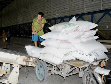Gạo Việt có hợp đồng 'khủng' 1 triệu tấn/năm