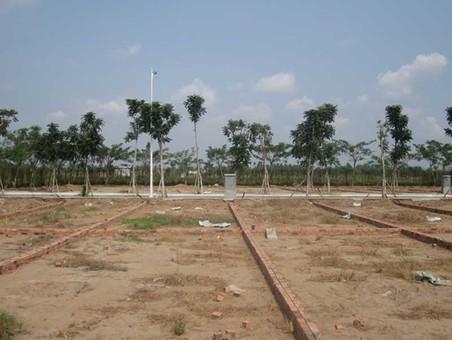 Vì sao chỉ cho tách thửa đất dưới 2.000 m2?
