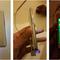 Rò rỉ hình ảnh Samsung Z1 và ngày ra mắt
