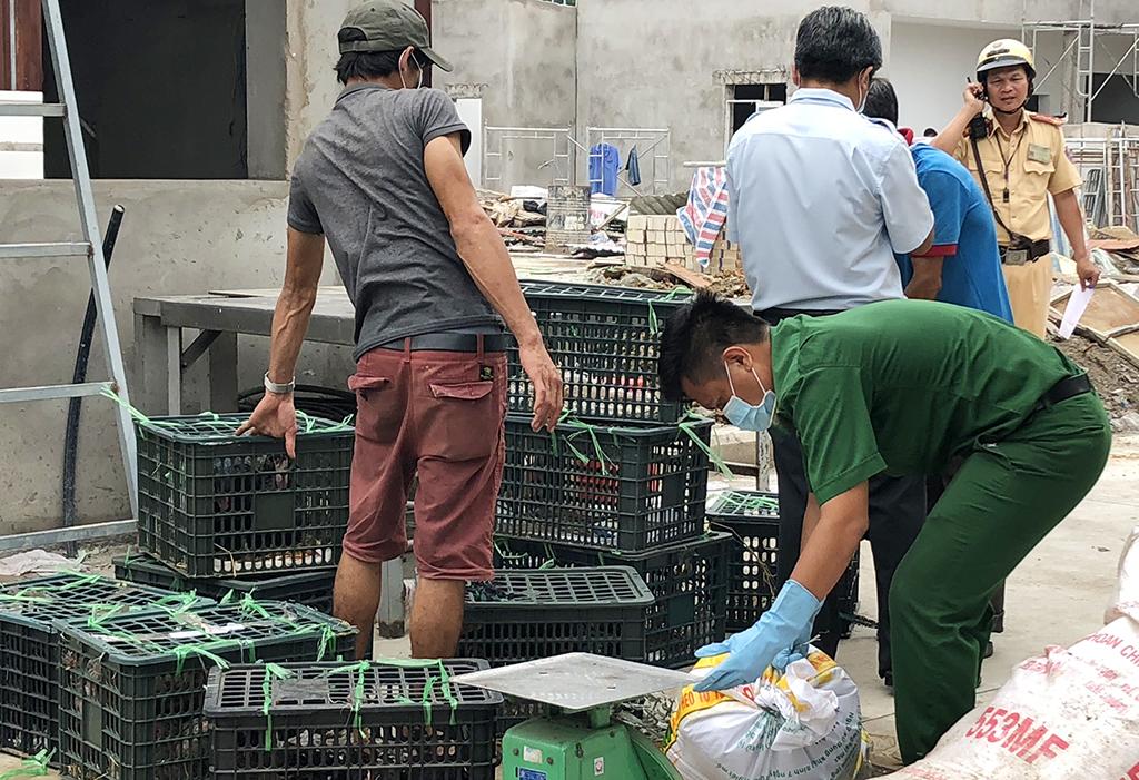 Xe khách chở thịt thối, gà sống bị bắt ở cửa ngõ TP.HCM