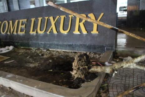 TP.HCM: Sập giàn giáo ở Dream Home Luxury, ba người thương vong - ảnh 1
