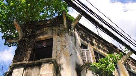 Tháo dỡ biệt thự trên đường Tăng Bạt Hổ - ảnh 1