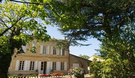 Vườn nho xanh tốt trong lâu đài tuyệt đẹp của Triệu Vy - ảnh 2