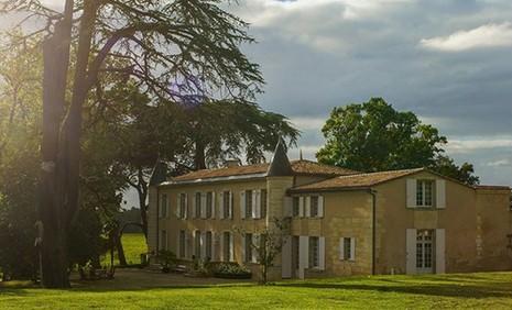 Vườn nho xanh tốt trong lâu đài tuyệt đẹp của Triệu Vy - ảnh 3