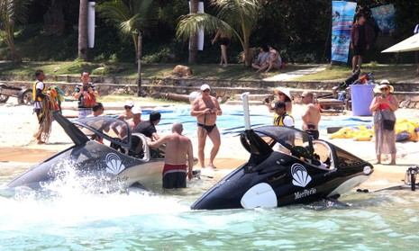 'Cưỡi' cá mập, cá heo tuyệt đẹp trên biển Nha Trang     - ảnh 11