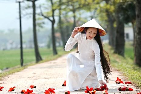 Tháng Ba mùa hoa gạo - ảnh 3