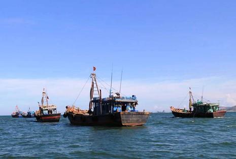 Thành lập ban chỉ đạo ổn định đời sống người dân sau sự cố cá chết  - ảnh 1