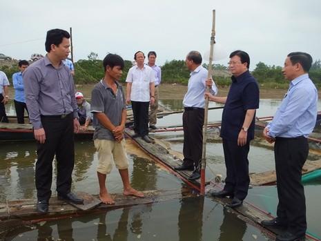 Cá chết ở miền Trung: Xử lý nghiêm nếu xả thải  gây độc  - ảnh 1