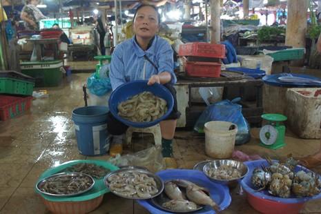 Hàm lượng kim loại nặng trong hải sản và rau ở Hà Tĩnh trong ngưỡng cho phép - ảnh 1