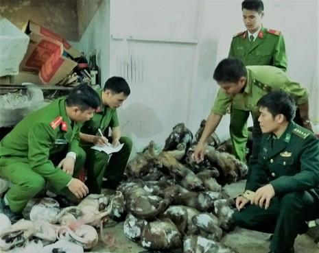 Lực lượng chức năng thu giữ tang vật tại nhà anh nhà anh Ngô Đức Cường.