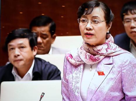 Đại biểu TP.HCM, Đà Nẵng lo về điều tiết ngân sách - ảnh 1
