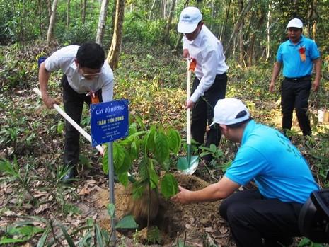 VQG Phong Nha-Kẻ Bàng khai trương điểm du lịch sinh thái rộng 40ha - ảnh 2