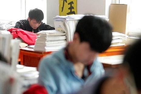 Cả hai rất chăm chỉ và đều học giỏi trong lớp