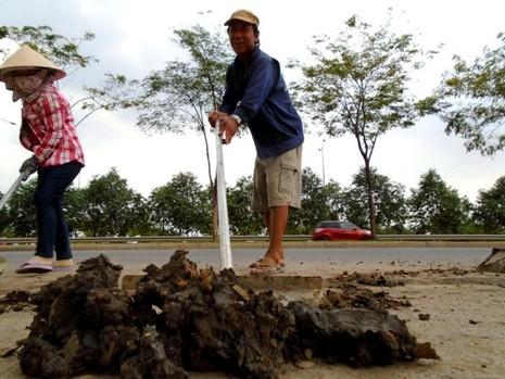 Ngộp thở vì khói bụi ô nhiễm tại xa lộ Hà Nội - ảnh 8