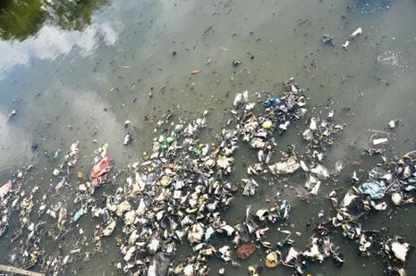 Cá thoi thóp nổi đầy trên kênh Nhiêu Lộc - ảnh 6