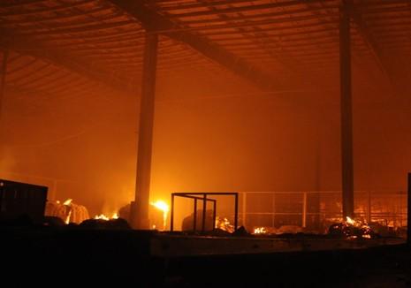 Cháy lớn trong khu công nghiệp Nhơn Trạch 3 - ảnh 1