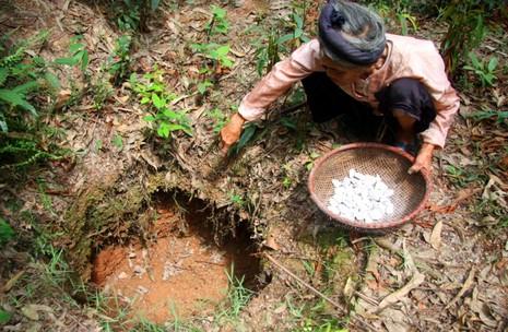 Chùm ảnh: Cặp vợ chồng còn duy trì tục ăn đất cổ xưa - ảnh 5