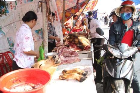 Hàng trăm con bê bị giết thịt tại chợ 'bán rủi cầu may' - ảnh 9
