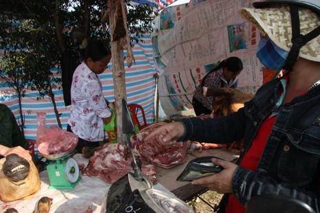 Hàng trăm con bê bị giết thịt tại chợ 'bán rủi cầu may' - ảnh 10