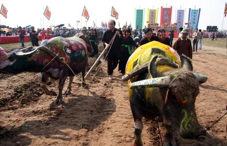 Khai hội 'Vua' xuống ruộng làm lễ Tịch điền - ảnh 15