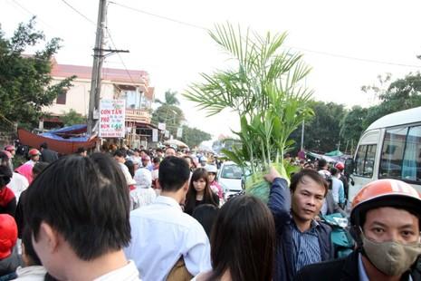 Chợ Viềng: Nghẹt thở đi chợ cầu may - ảnh 7