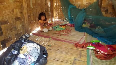 Tỉnh Bình Thuận yêu cầu kiểm tra thông tin gia đình 'người rừng' - ảnh 2