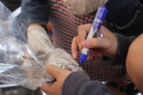 Sở Y tế lấy lại mẫu xét nghiệm vụ cá nục nhiễm phenol - ảnh 1