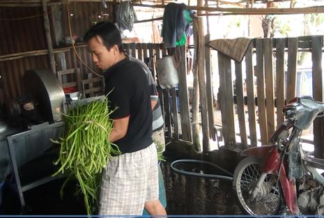 Bắt giữ hơn 1,5 tấn rau muống bào ngâm hóa chất ở Củ Chi - ảnh 4