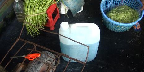 Bắt giữ hơn 1,5 tấn rau muống bào ngâm hóa chất ở Củ Chi - ảnh 2