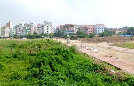 Mới: Miễn, giảm tiền sử dụng đất trong trường hợp đấu giá - ảnh 1