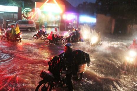 Chùm ảnh: Sân bay Tân Sơn Nhất bị biển nước vây quanh - ảnh 7