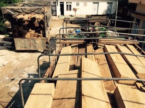 Số gỗ lậu được vận chuyển trên 2 xe ô tô tải bị bắt giữ