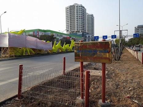 Gỡ hoa hình con rồng trên đường phố Hải Phòng - ảnh 1