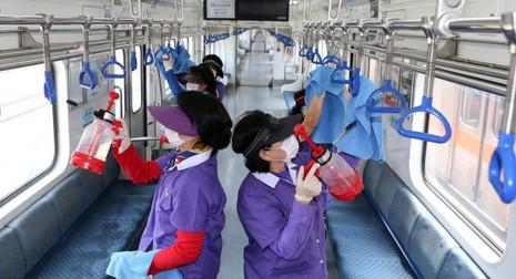 Chùm ảnh cúm Trung Đông 'tấn công' Hàn Quốc - ảnh 4